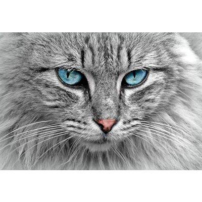 Extra grote brok voor volwassen Maine Coon katten vanaf 15 maanden een uitgebalanceerde voeding die aan alle behoeften voldoet.