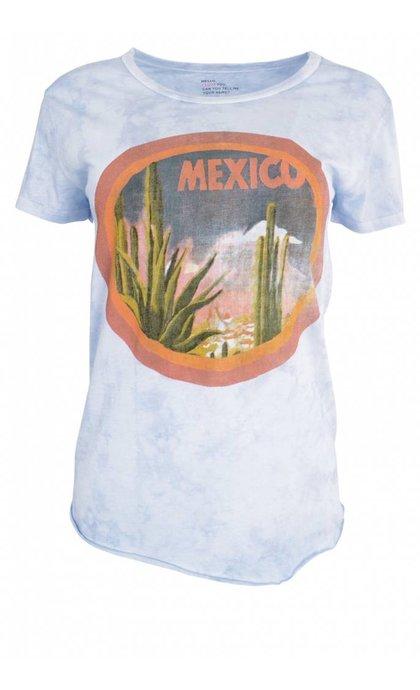 Leon & Harper Toro Cactus Sky