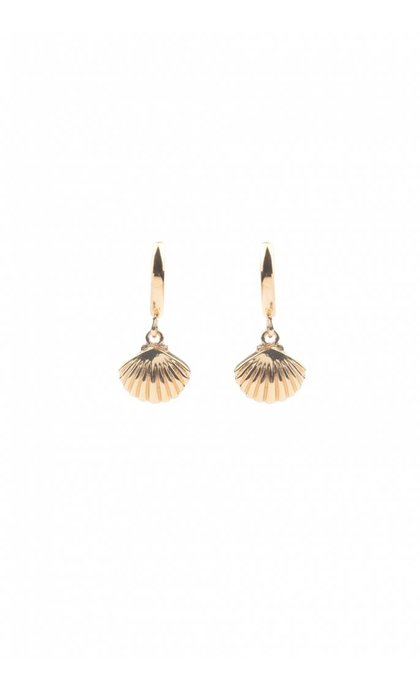 All the Luck in the World Souvenir Sea Shell Earrings Goldplated