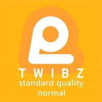 TAMPONS STANDAARD KWALITEIT 12x NORMAL