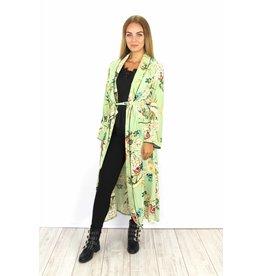Long green kimono
