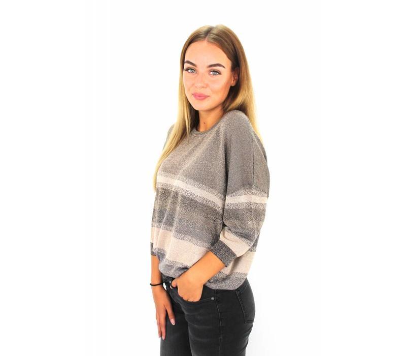 Glitter sweater old lan