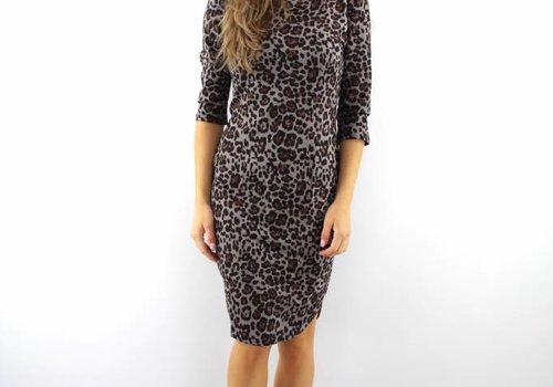 Lulu Love Leopard dress grey