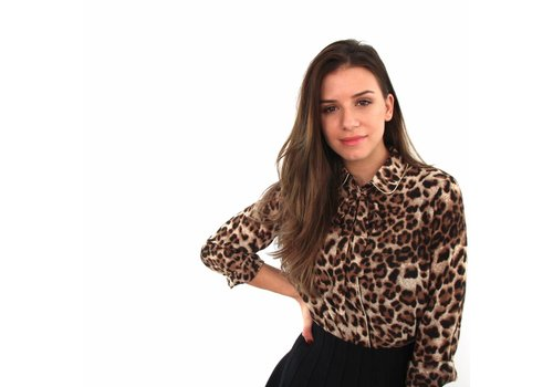 Taupe leopard blouse