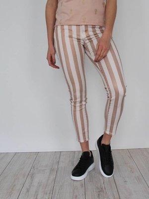 Toxik Rose striped glitter jeans