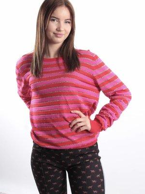 Ambika Stripes pink/red jumper