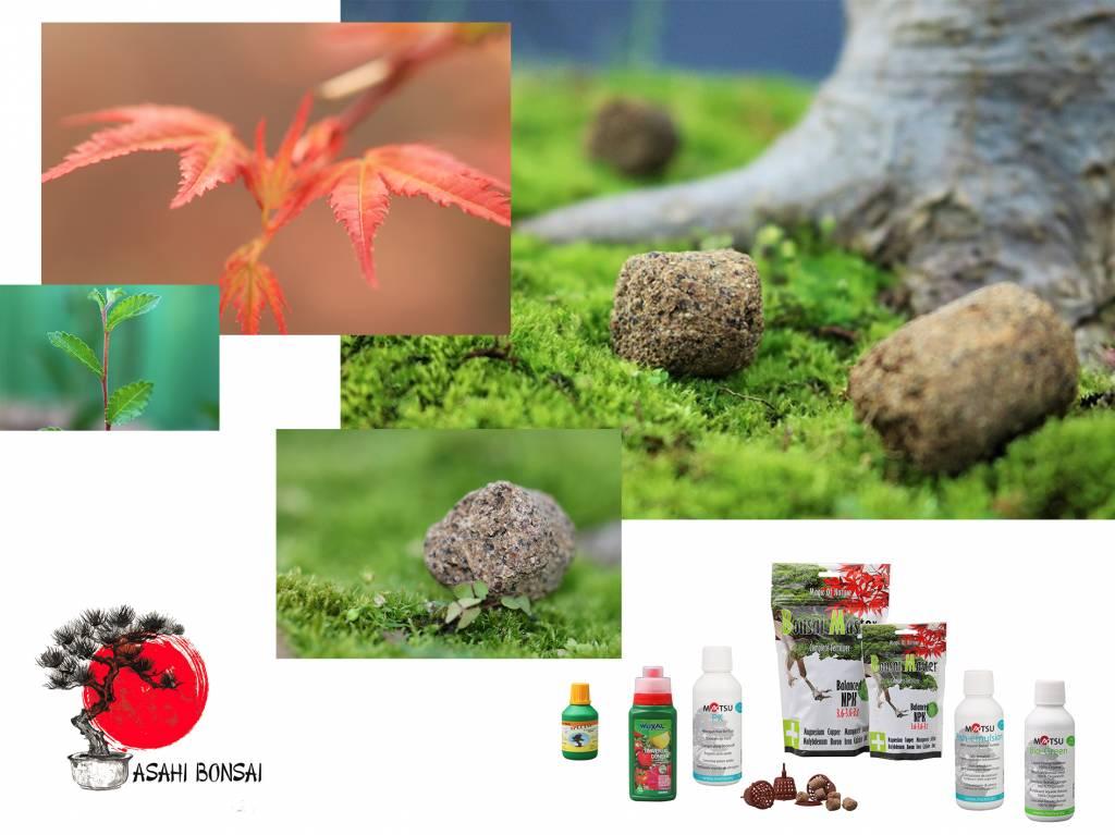 Dünger, Pflanzenschutz und Sonstiges