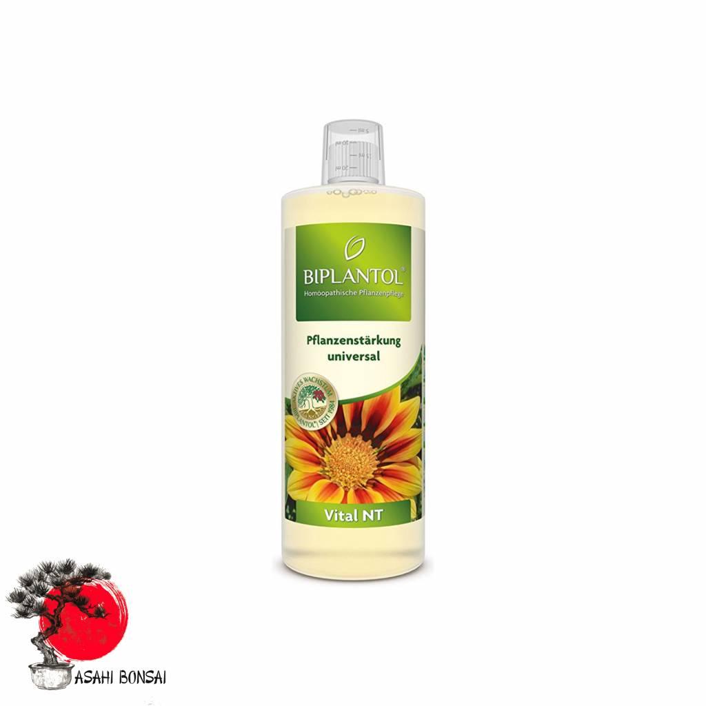 Biplantol Vital NT (250ml) Universelles Pflanzenstärkungsmittel