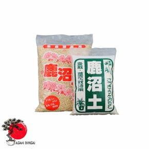 Kanuma (Azaleenerde aus Japan)