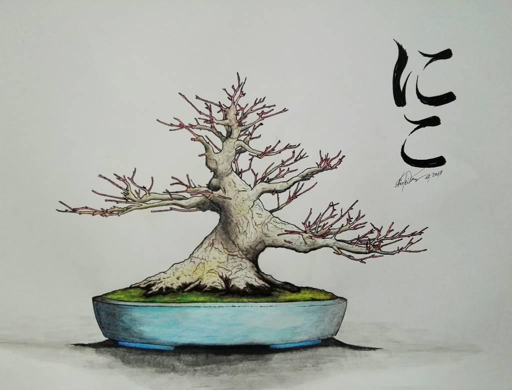 Das Zeichnen von Bonsai - Erklärt von Nico Tismer.