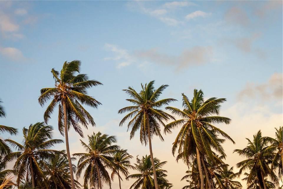 Werknemers vinden het lastig om vakantiedagen op te nemen