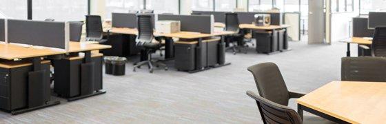 De voordelen van werken in een kantoortuin