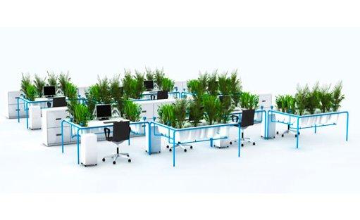 Minder stress door planten op kantoor