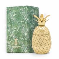 Pineapple Tumbler