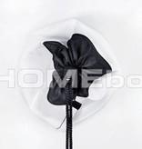 HOMEbox HOMEbox Ambient Q60