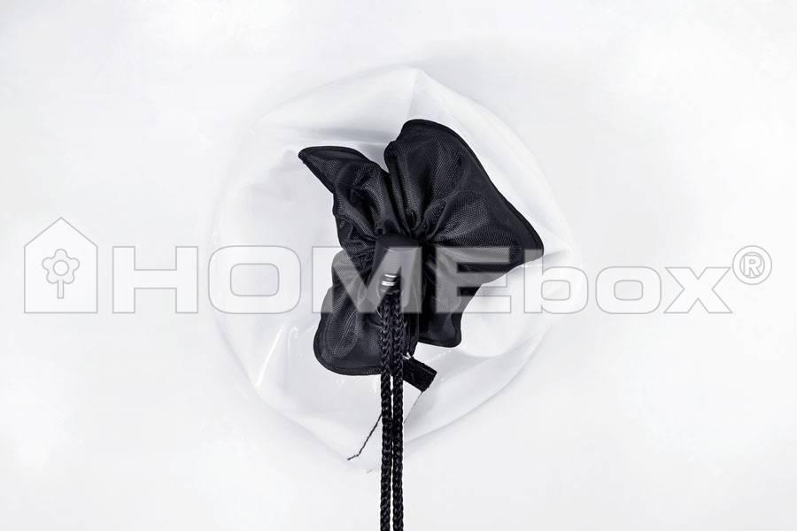 HOMEbox HOMEbox Ambient Q100