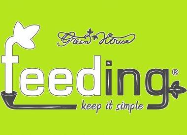 Greenhouse Feeding