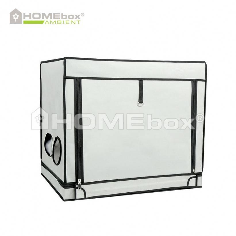 HOMEbox HOMEbox Ambient R80S