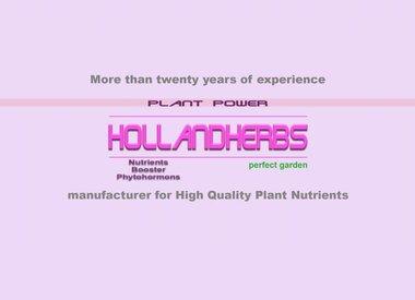 Hollandherbs®