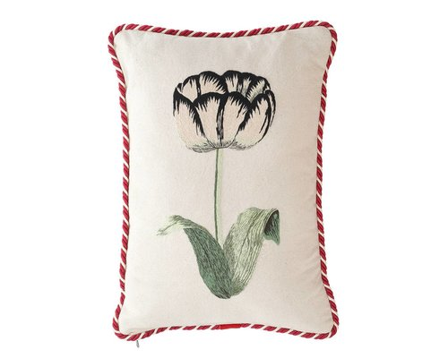 Cushion Tulip