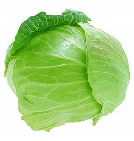 Brand 4 cabbage