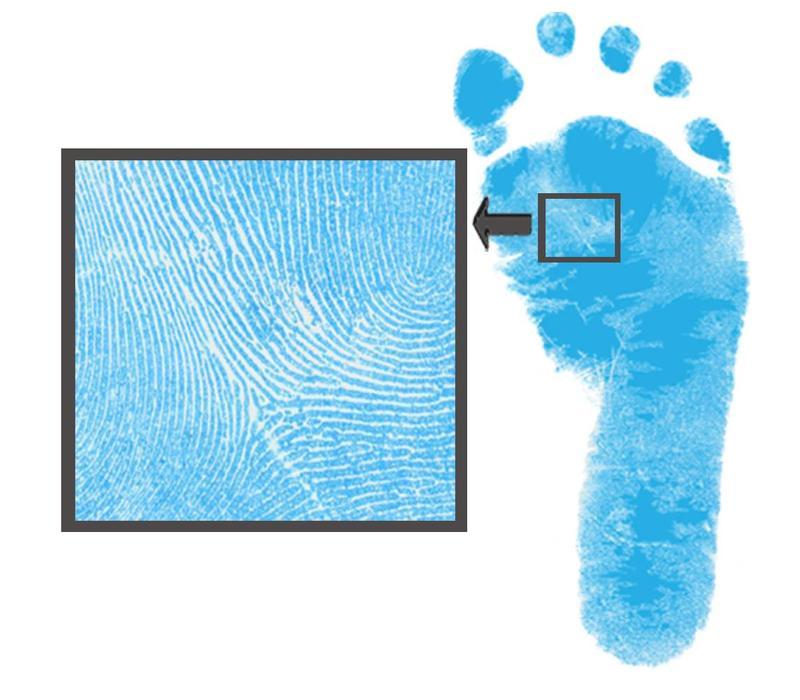 Farbiges Dactek Fuß- und Handabdruck Set