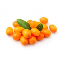 Giftbox Sea Buckthorn