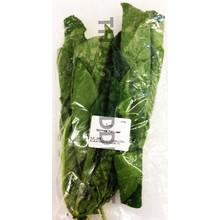 Fresh Import Fresh Bai Yor (Marinda Leaf) 100g