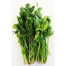Fresh Import Thai Celery 100g