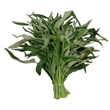 Fresh Import Water Spinach (Morning Glory) 200g