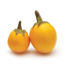 Fresh Import Yellow Eggplant Aubergine 200g