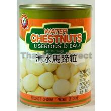 Brotherhood Water Chesnuts 567g