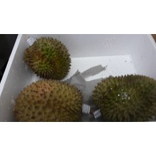 Fresh Import Durian Approx 3kg
