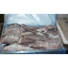 Asean Seas Catfish Steaks (No Head & No Tail) 1kg