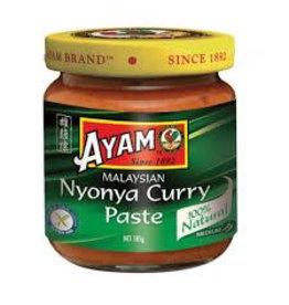 Ayam Nyonya Curry Paste 185g