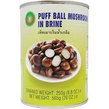 X.O Puff Ball Mushroom 565g