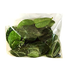 Lime Leaves Frozen 114g