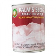 X.O Palm Seeds (Atlap) in Syrup 650g