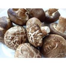 Shiitake Mushroom 100g