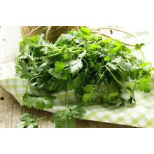 Coriander with Root 200g
