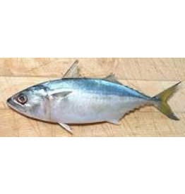 Asean Seas Clean Whole Indian Mackerel 1kg