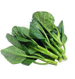 Chinese Kale 250g
