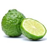 Fresh Kaffir Lime Fruit **NEW LIMITED SUPPLY 1 WEEK DELIVERY TIME**