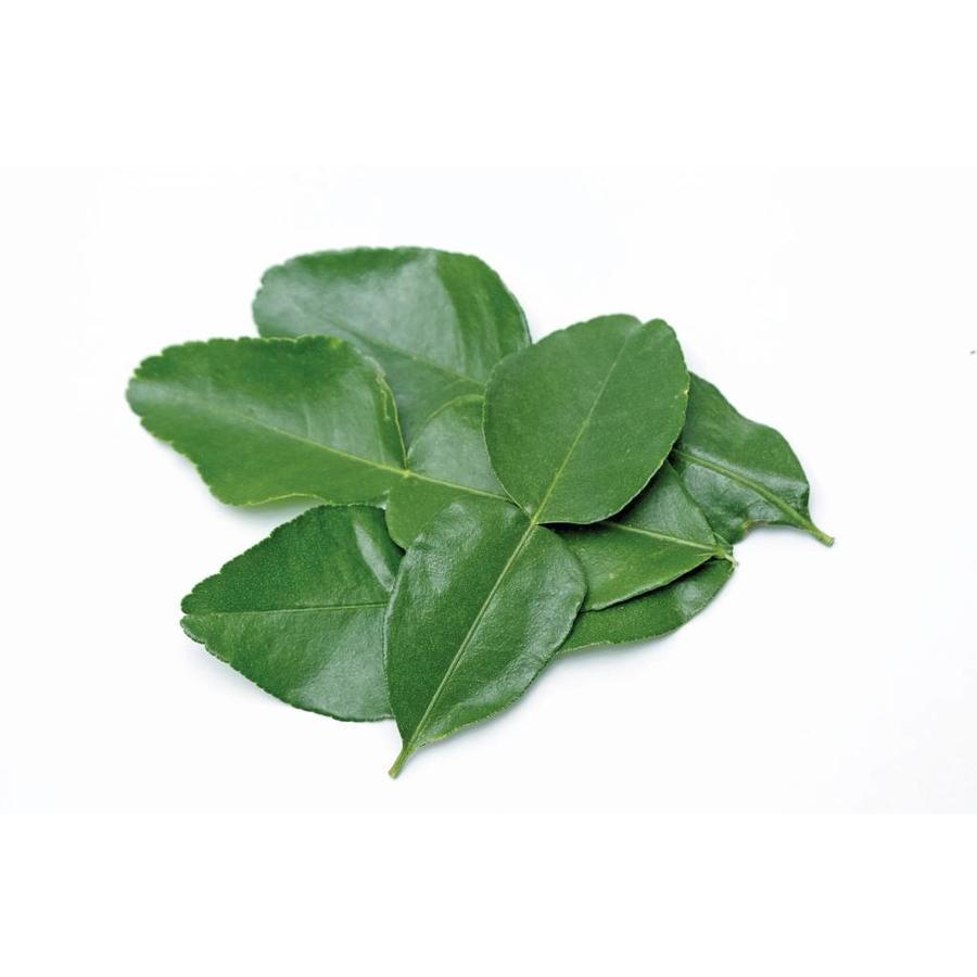 Lime Leaves, 100g