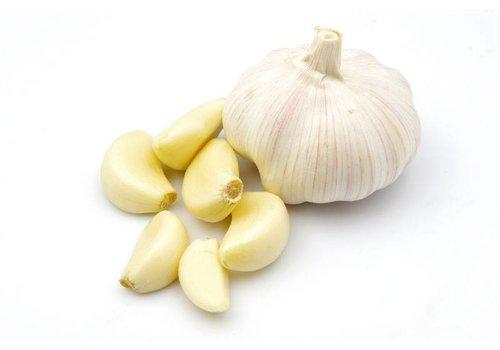 Fresh Garlic, 12 stuks
