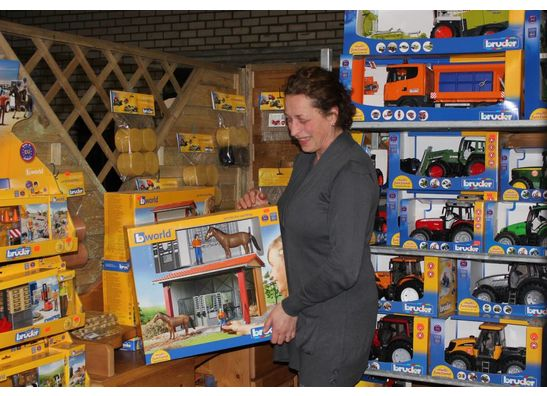 T-Toys Sint Oedenrode