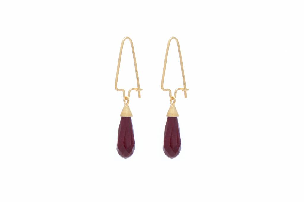 Wouters & Hendrix sterling silver hook earrings with red Jasper