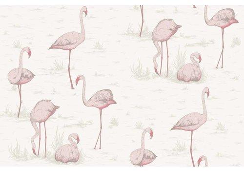 Cole & Son Flamingos behangpapier 2