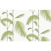 Palm behangpapier