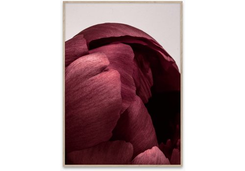 Paper Collective Peonia 01 poster 50x70cm